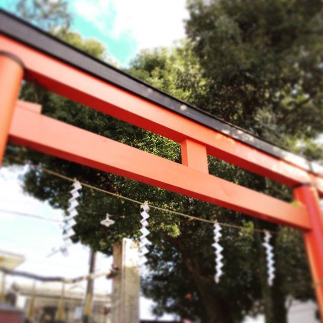 奈良 率川神社 初詣