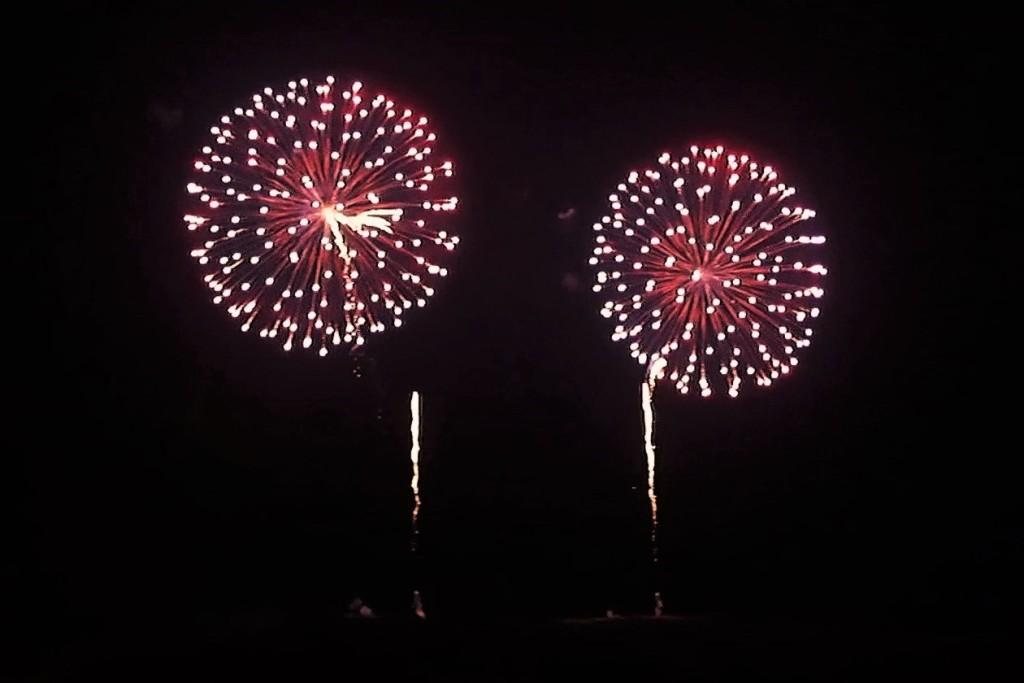 奈良公園 花火大会 冬の花火