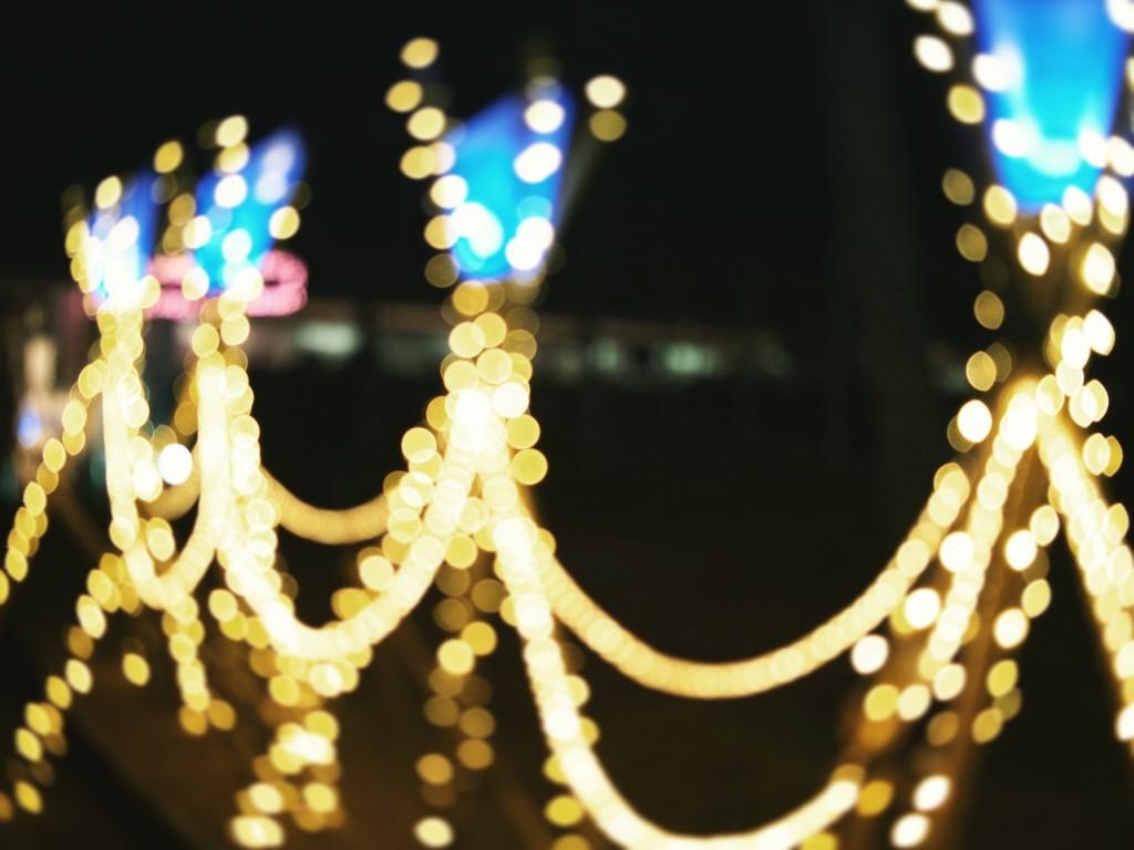 なら瑠璃絵 奈良公園 ライトアップ