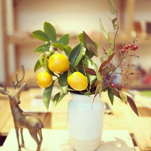 奈良 草花