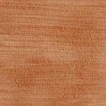 柿渋染め革の色見本